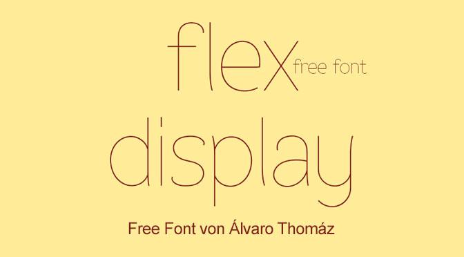 11-FlexDisplay
