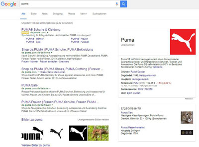 Google Entitäten-Box Puma