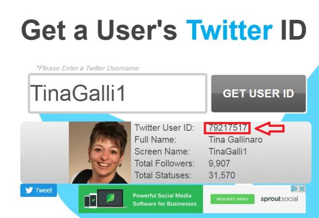 Twitter ID abrufen 2