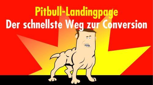 Die Pitbull-Landingpage: Der schnellste Weg zur Conversion